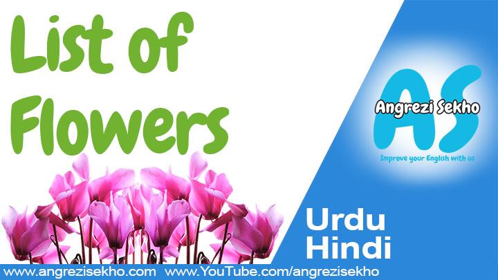 List-of-flowers-in-English-Urdu-Hindi-Meaning-angrezi-sekho