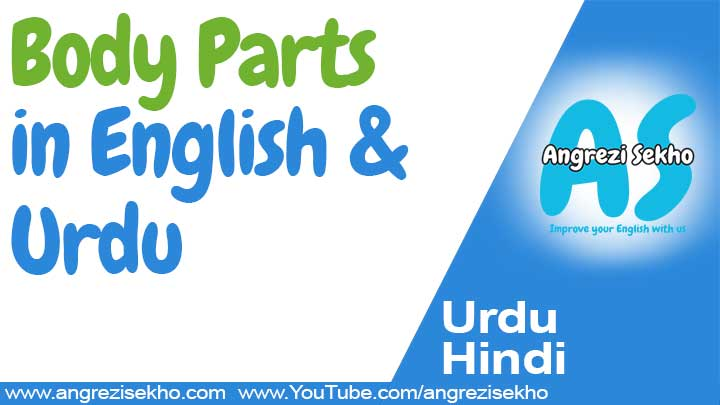 Body-Parts-Name-Name-In-Urdu-And-English