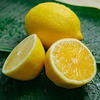 Lemon-meaning-in-urdu-hindi