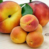 Peaches-meaning-in-urdu-hindi