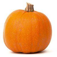 Pumpkin-meaning-in-urdu-hindi-kdoo-کدو