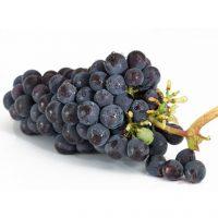 grapes-in-urdu