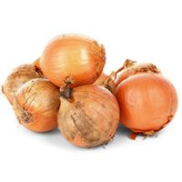 onion-meaning-in-urud-and-hindi-پیاز