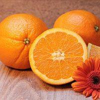 orange-meaning-in-urdu-hindi